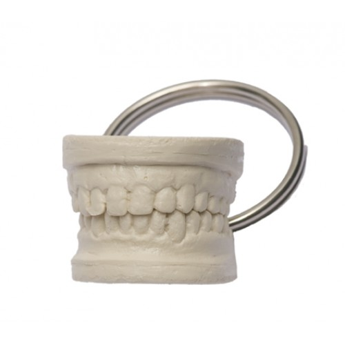 Key Chain Teeth